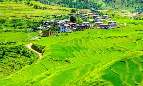 Bài phát biểu tiếng Anh lay động của Thủ tướng Bhutan2