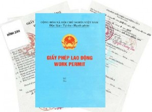thu-tuc-cap-giay-phep-lao-dong-cho-nguoi-nuoc-ngoai-lam-viec-tai-viet-nam
