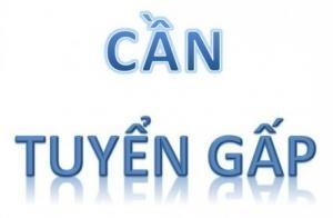 tuyen-gap-nhan-vien-van-phong