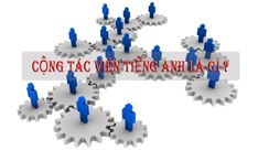 icon-cong-tac-vien-dich-thuat-tieng-anh